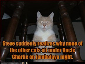 Steve suddenly realizes why none of the other cats sit under Uncle Charlie on jambalaya night.