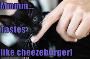 Mmmm...  Tastes like cheezeburger!