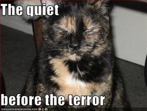 The quiet  before the terror