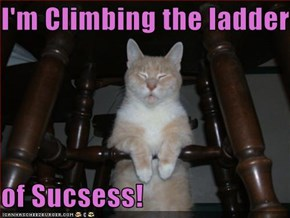 I'm Climbing the ladder   of Sucsess!