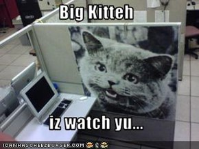 Big Kitteh  iz watch yu...