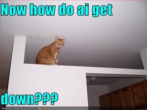 Now how do ai get  down???