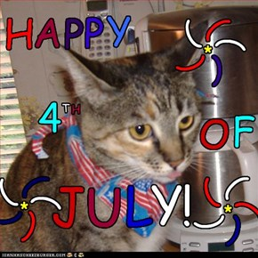 Happy 4th of July Cheezfrends!