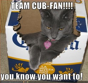TEAM CUB-FAN!!!!  you know you want to!