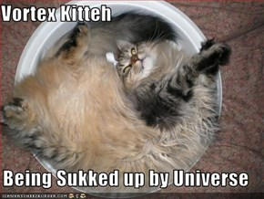 Vortex Kitteh  Being Sukked up by Universe