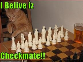 I Belive iz  Checkmate!!