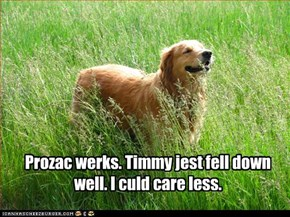 Prozac werks. Timmy jest fell down well. I culd care less.