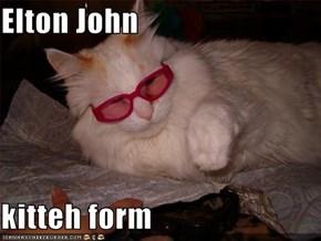 Elton John  kitteh form