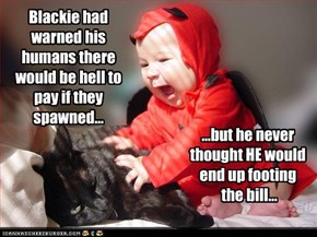 Blackie had warned his humans there would be hell to pay if they spawned...