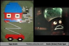 lego brain Totally Looks Like brain (brian) from Igor