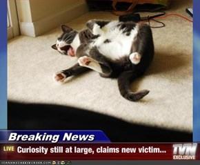 Breaking News - Curiosity still at large, claims new victim...