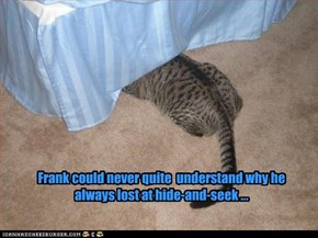 Frank could never quite  understand why he always lost at hide-and-seek ...