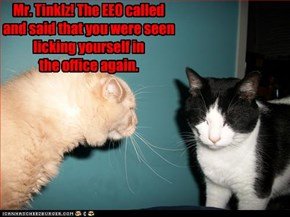 Mr. Tinklz! The EEO called and said that you were seen licking yourself in  the office again.