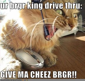 ur brgr king drive thru:  GIVE MA CHEEZ BRGR!!