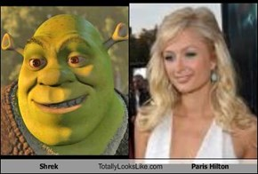 Shrek Totally Looks Like Paris Hilton