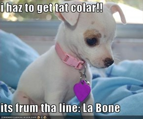 i haz to get tat colar!!  its frum tha line: La Bone