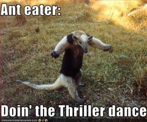 Ant eater:  Doin' the Thriller dance