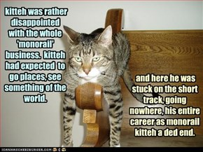 kitteh was rather disappointed with the whole 'monorail' business.  kitteh had expected  to go places, see something of the world.