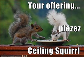 Your offering... plezez Ceiling Squirrl