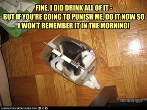 FINE, I DID DRINK ALL OF IT -  BUT IF YOU'RE GOING TO PUNISH ME, DO IT NOW SO I WON'T REMEMBER IT IN THE MORNING!