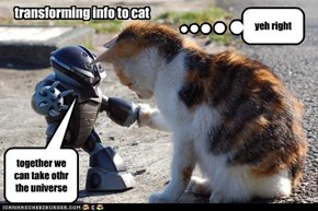 transforming info to cat
