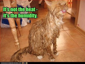 It's not the heat - it's the humidity.