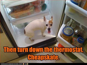 Then turn down the thermostat, Cheapskate.