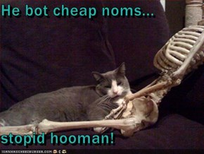 He bot cheap noms...  stopid hooman!
