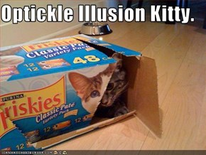 Optickle Illusion Kitty.