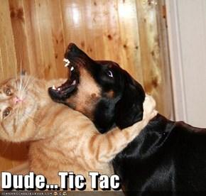 Dude...Tic Tac