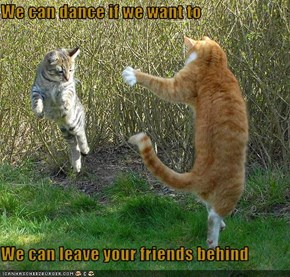 We can dance if we want to  We can leave your friends behind