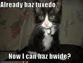 Already haz tuxedo.  Now I can haz bwide?