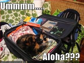 Ummmm.....  Aloha???