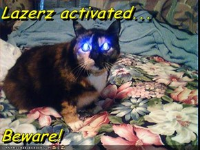 Lazerz activated...  Beware!