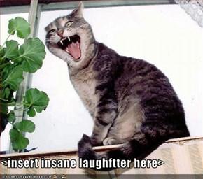 <insert insane laughftter here>