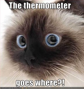 The thermometer  goes where?!