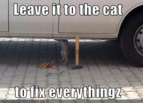 Leave it to the cat  to fix everythingz