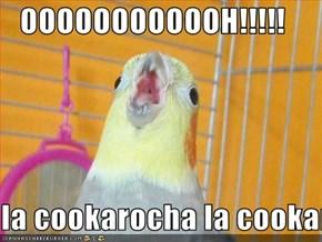 OOOOOOOOOOOH!!!!!  la cookarocha la cookarocha