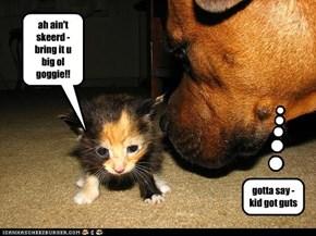 ah ain't skeerd - bring it u big ol goggie!!