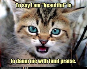 """To say I am """"beautiful"""" is"""