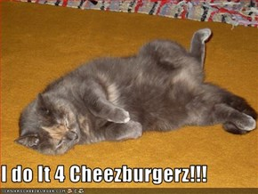 I do It 4 Cheezburgerz!!!