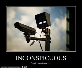 INCONSPICUOUS