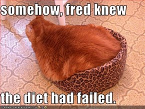 somehow, fred knew   the diet had failed.