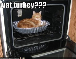 wat turkey???