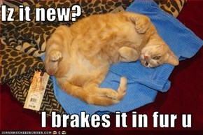 Iz it new?  I brakes it in fur u