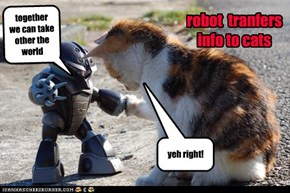 robot  tranfers info to cats