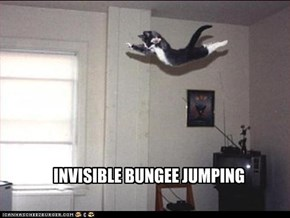 INVISIBLE BUNGEE JUMPING