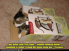 One Kitteh Citeh Play Citteh = Elebenty Hundred Dollars Enjoyment of Rather PLaying Wif Kitteh Citteh Box = Priceless