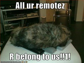 All ur remotez  R belong to us!!1!