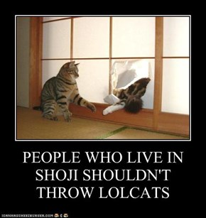 PEOPLE WHO LIVE IN SHOJI SHOULDN'T THROW LOLCATS